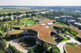 N.N Residence – дом с травяной крышей