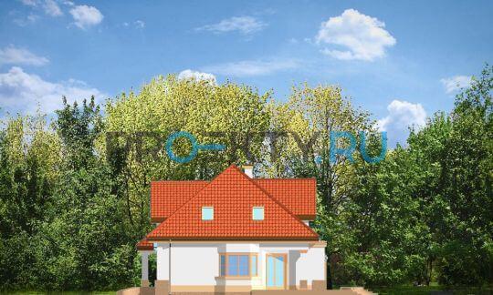 Фасады проекта Дом на Медаль