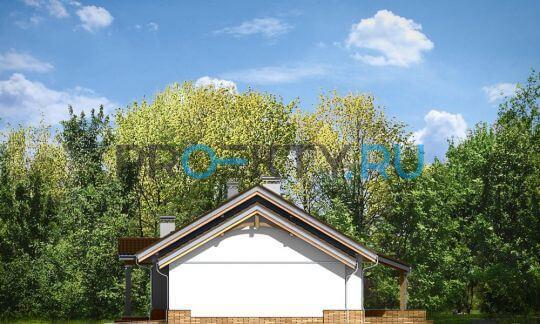 Фасады проекта Незабудка с гаражом