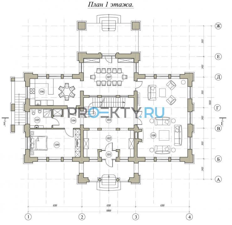 План проекта Ирина - 2