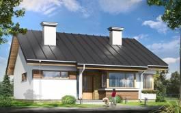 проект Дом для троих