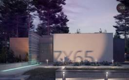 проект Zx65